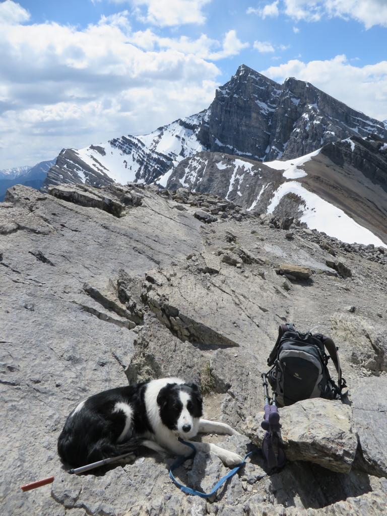 Ha Ling Peak, Canmore (Credit: M. Kopp)